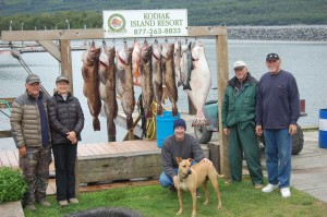 Ling Cod fishing in Larsen Bay Alaska has been red hot this August.