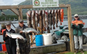 Ling Cod and silver salmon Fishing is as good as it gets In Larsen Bay Alaska right now.