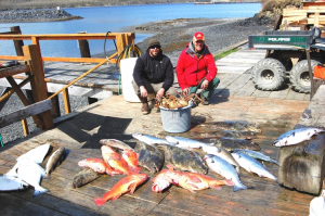 Spring Kings with plenty of halibut and yelloweye rockfish!