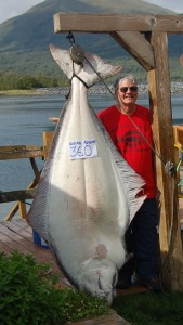 Bob Arnold from Michigan caught a new Kodiak Island Resort record for biggest halibut today.