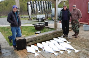 A limit of Spring King Salmon and early season halibut !!!!