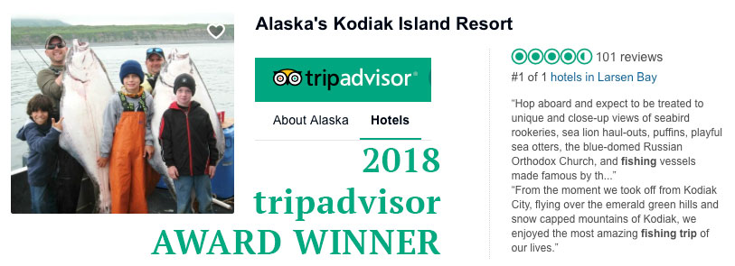 trip advisor award winner